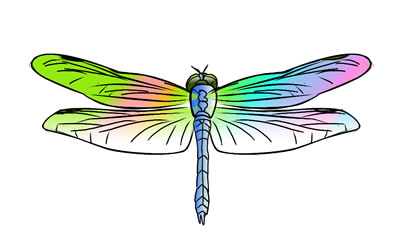 dragonfly clipart - clipground