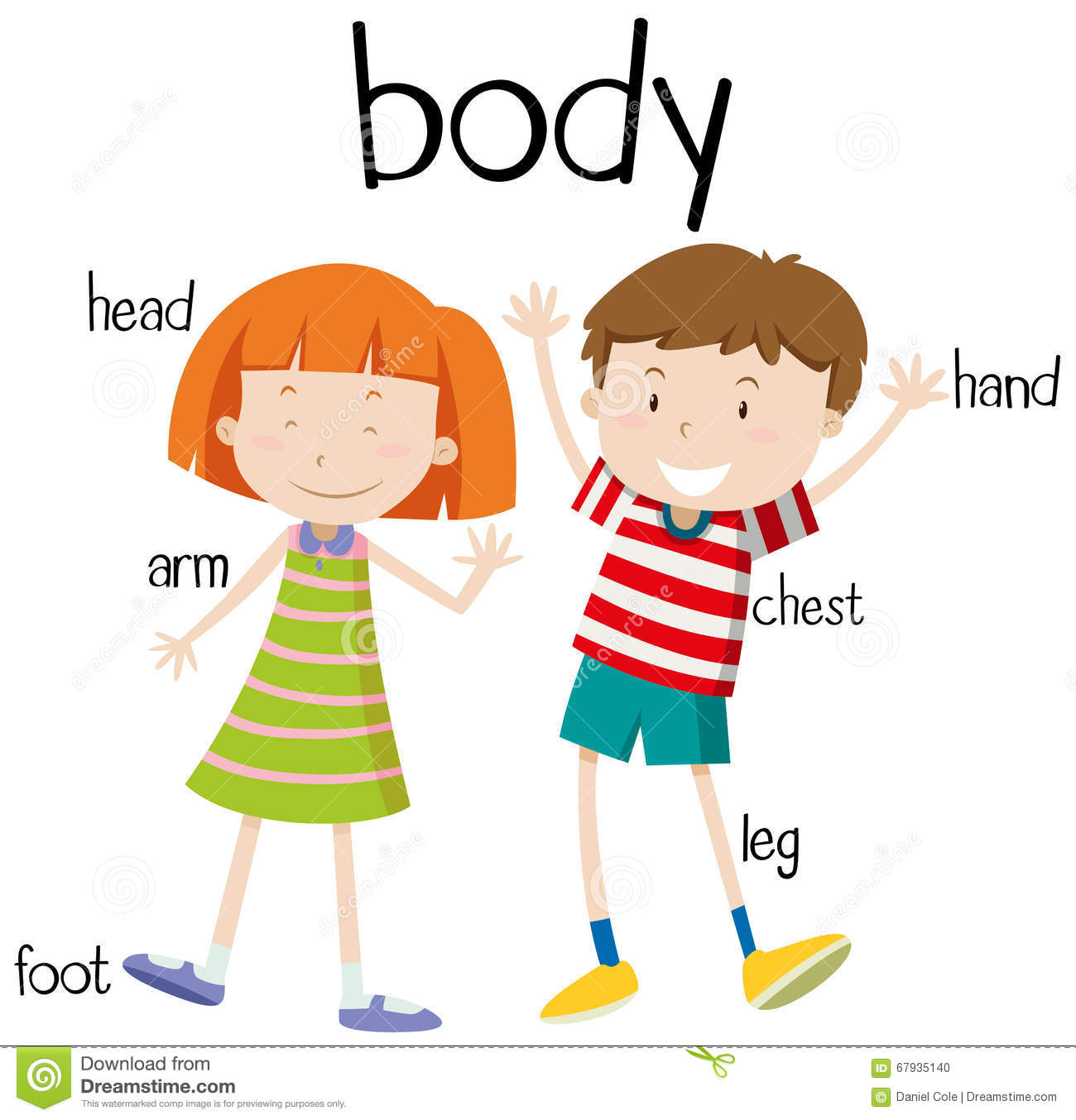 Body Parts Clipart