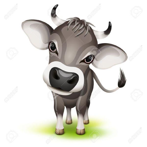 Cow Clip Art