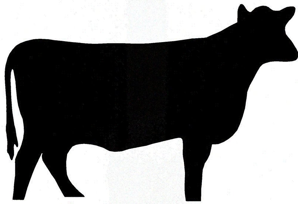 medium resolution of show steer silhouette clipart cattle silhouette clipart
