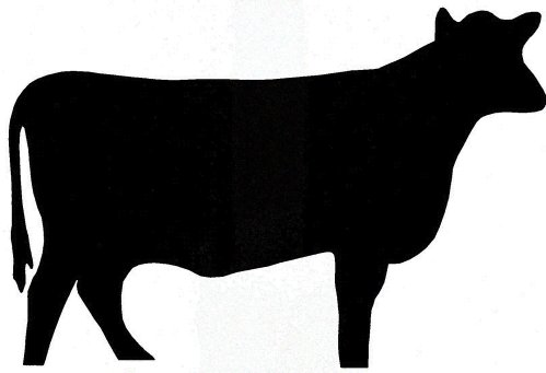 small resolution of show steer silhouette clipart cattle silhouette clipart