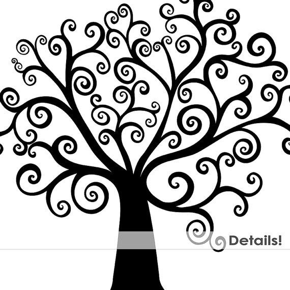 Pecan Tree Rootstock For Sale