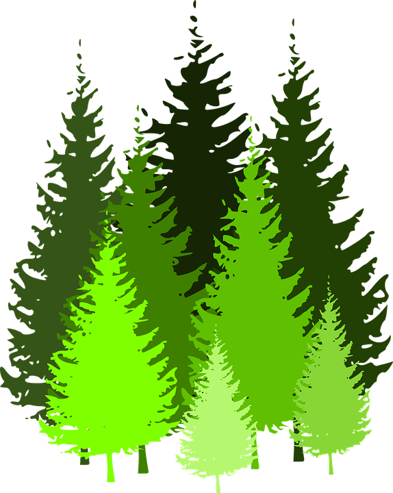 ka tree clipart 20 free Cliparts  Download images on