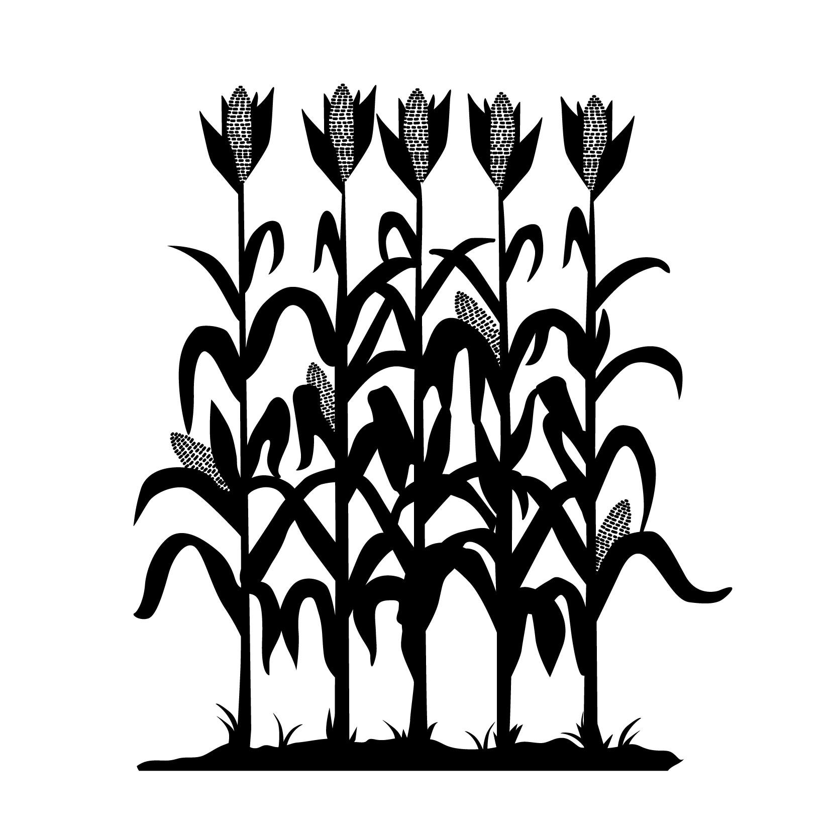 Corn Stalk Silhouette Clipart Free 20 Free Cliparts