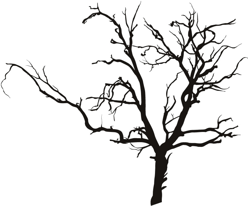 Autumn Tree Leaf Fall Animated Wallpaper Creepy Tree Clipart Outline Clipground