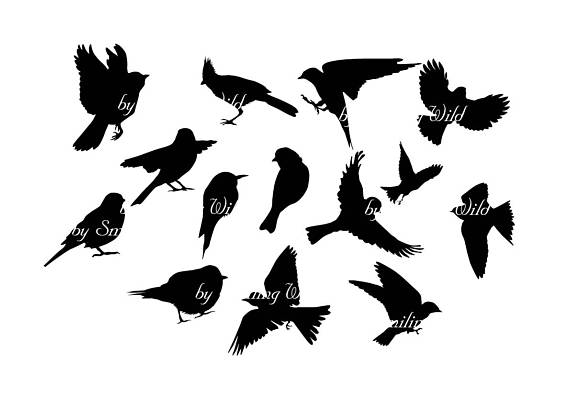 cutout bird silhouette flying clipart 20 free Cliparts