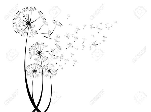 dandelion fluff clipart 20 free