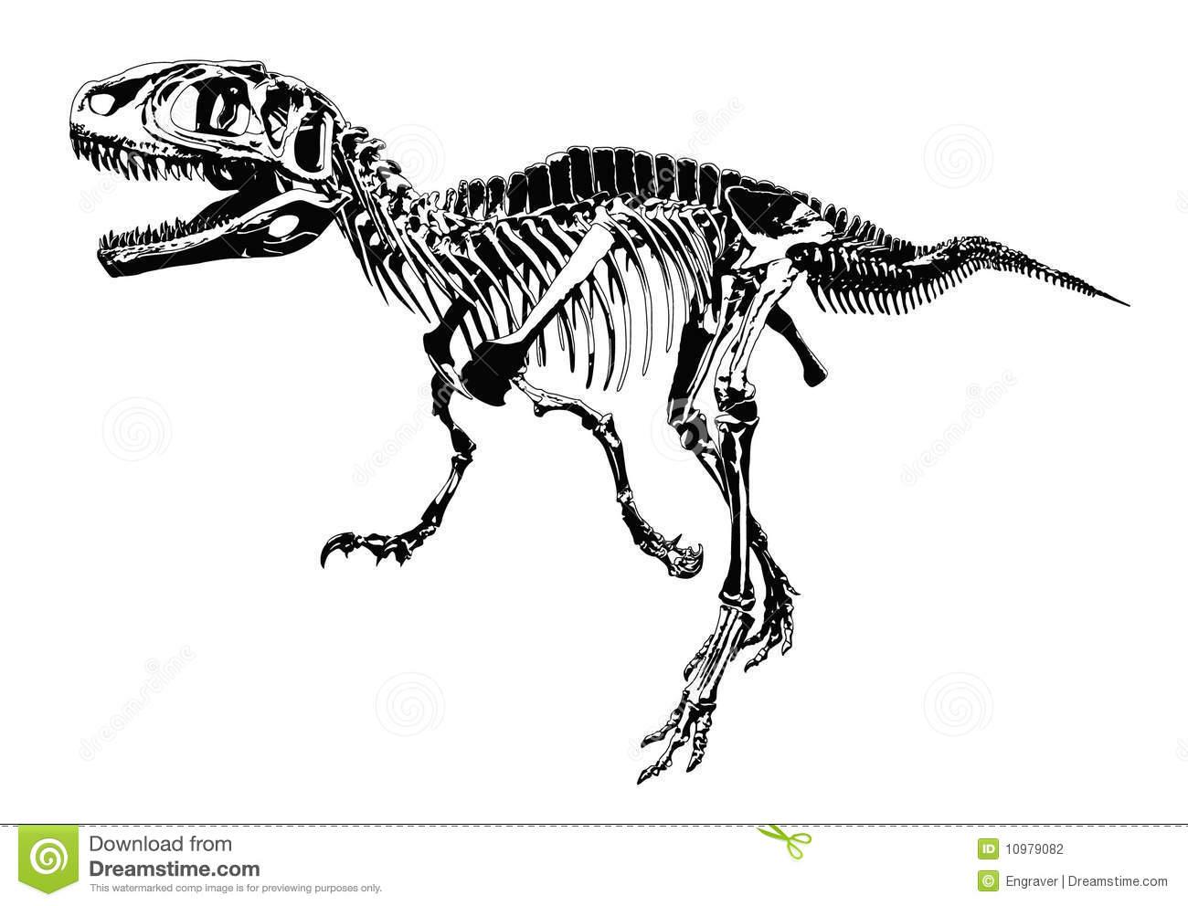 Dinosaur Skeleton Clipart 20 Free Cliparts