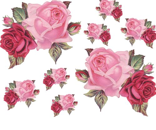 double rose clipart - clipground