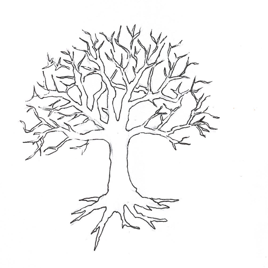 tree trunk diagram blank