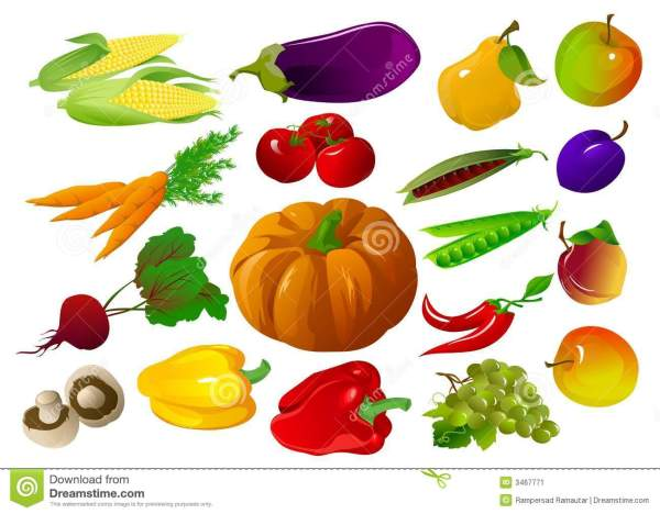 fall vegetables clipart - clipground