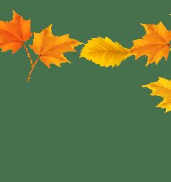 leaves falling clipart  [ 5094 x 2822 Pixel ]