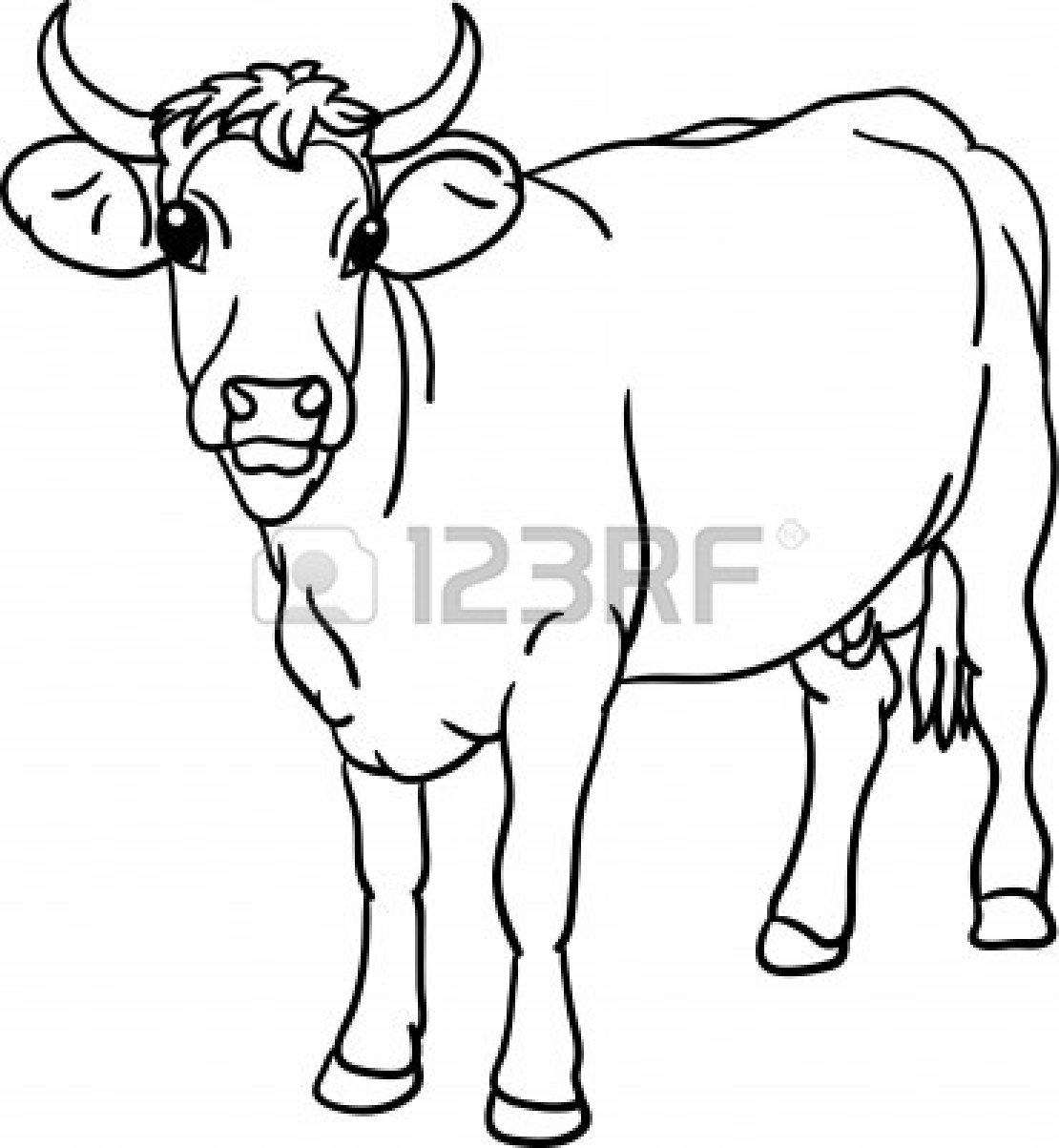 Female Cattle Clipart