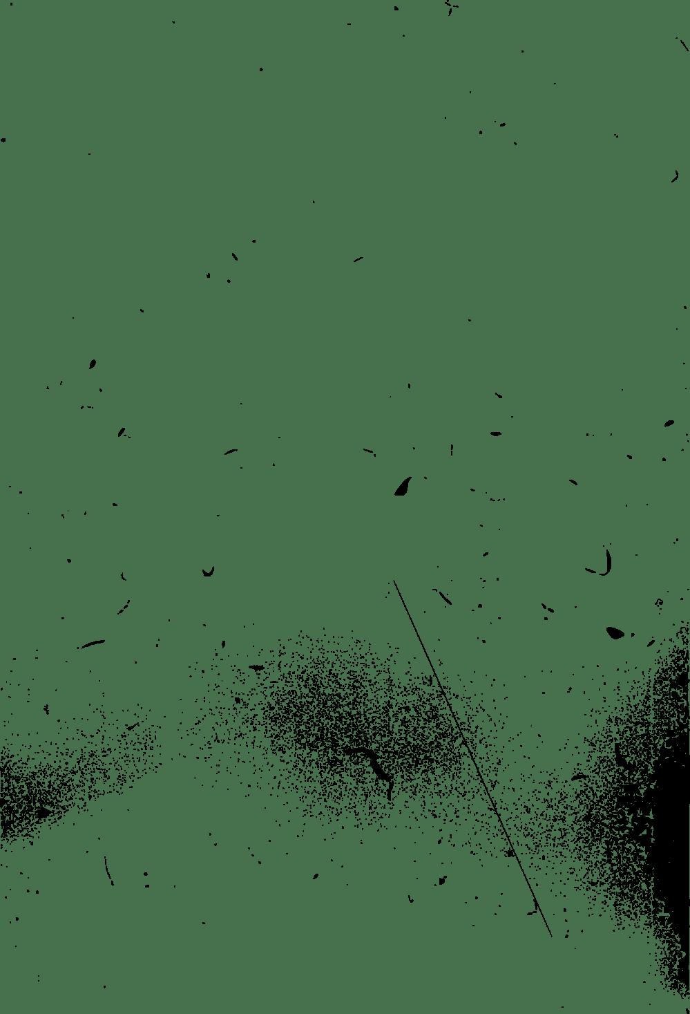 medium resolution of download film grain clipart 9 jpg