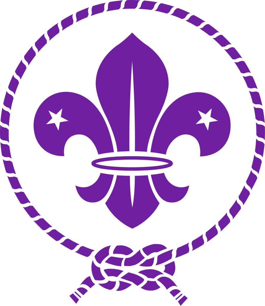 hight resolution of the world scout emblem of the world organization of the scout movement elements of which are used by most national scout organizations the fleur de lis