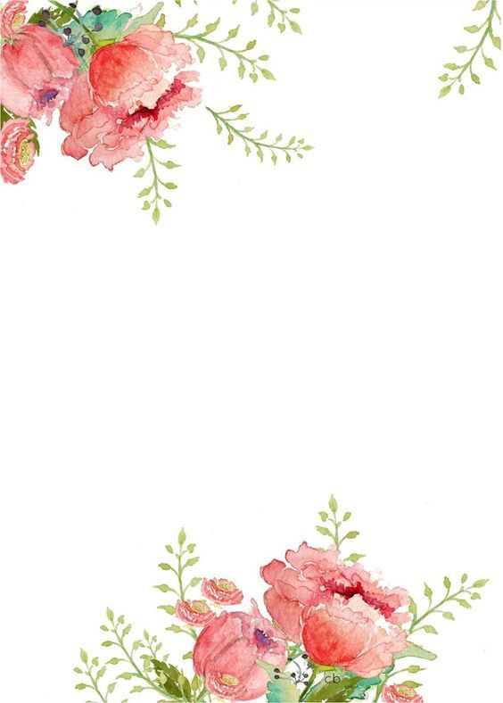 Flower Borders Free Clipground