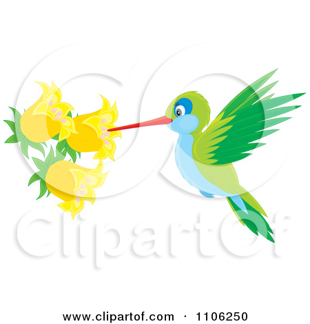 flower nectar clipart 20 free cliparts