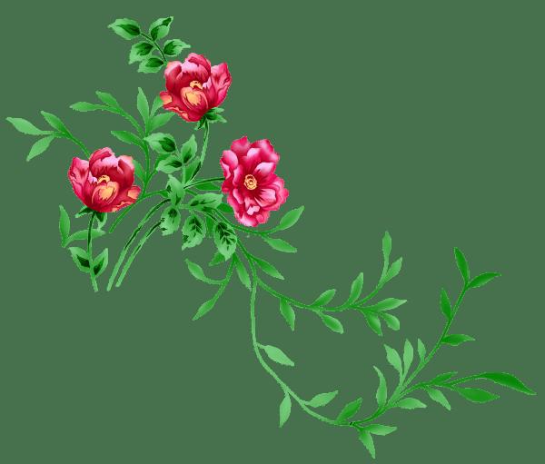 Floral Clip Art Transparent