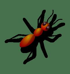 big eye ant clipart  [ 2400 x 2400 Pixel ]