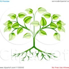 Plant Diagram Clip Art 2004 Pt Cruiser Speaker Wiring Leaf Foliage Clipart Clipground