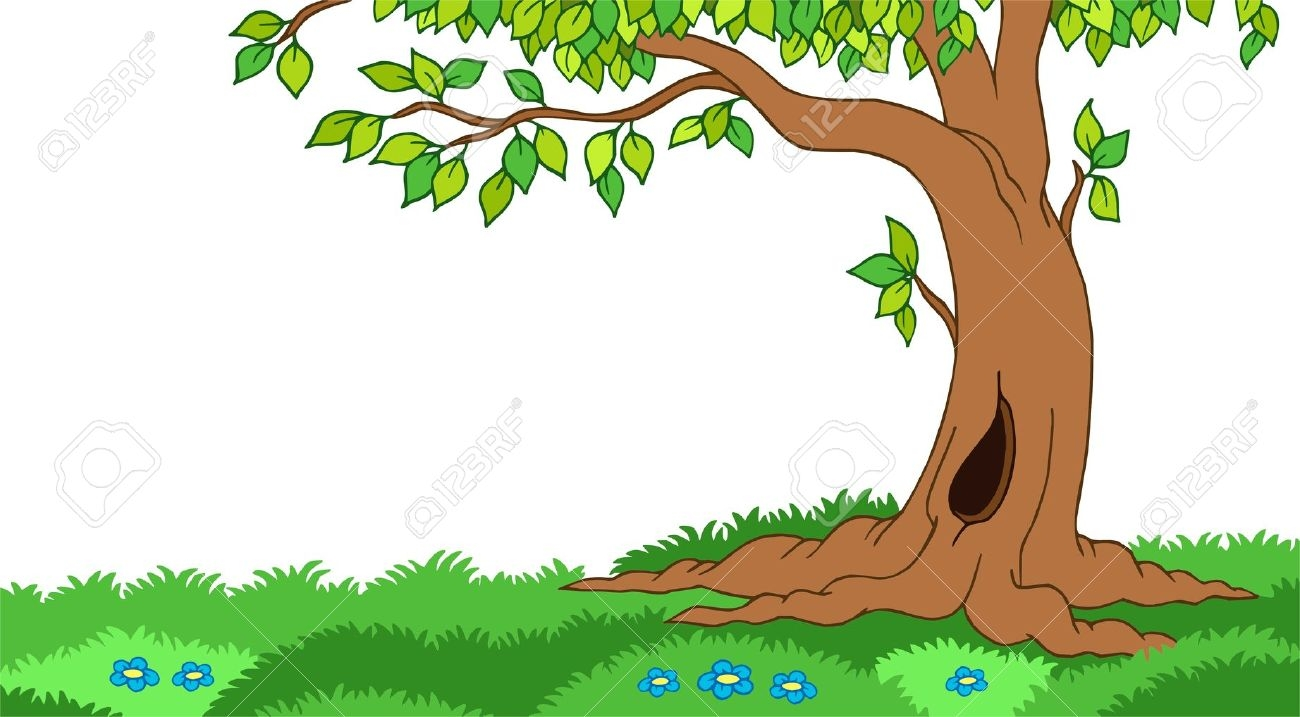 Forest plant clipart  Clipground