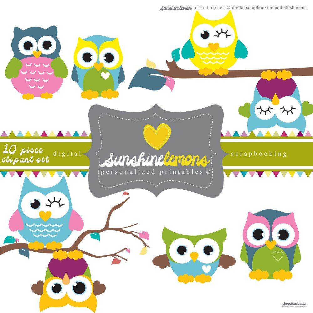 medium resolution of cute owl clip art free cute owl clip art clip art images