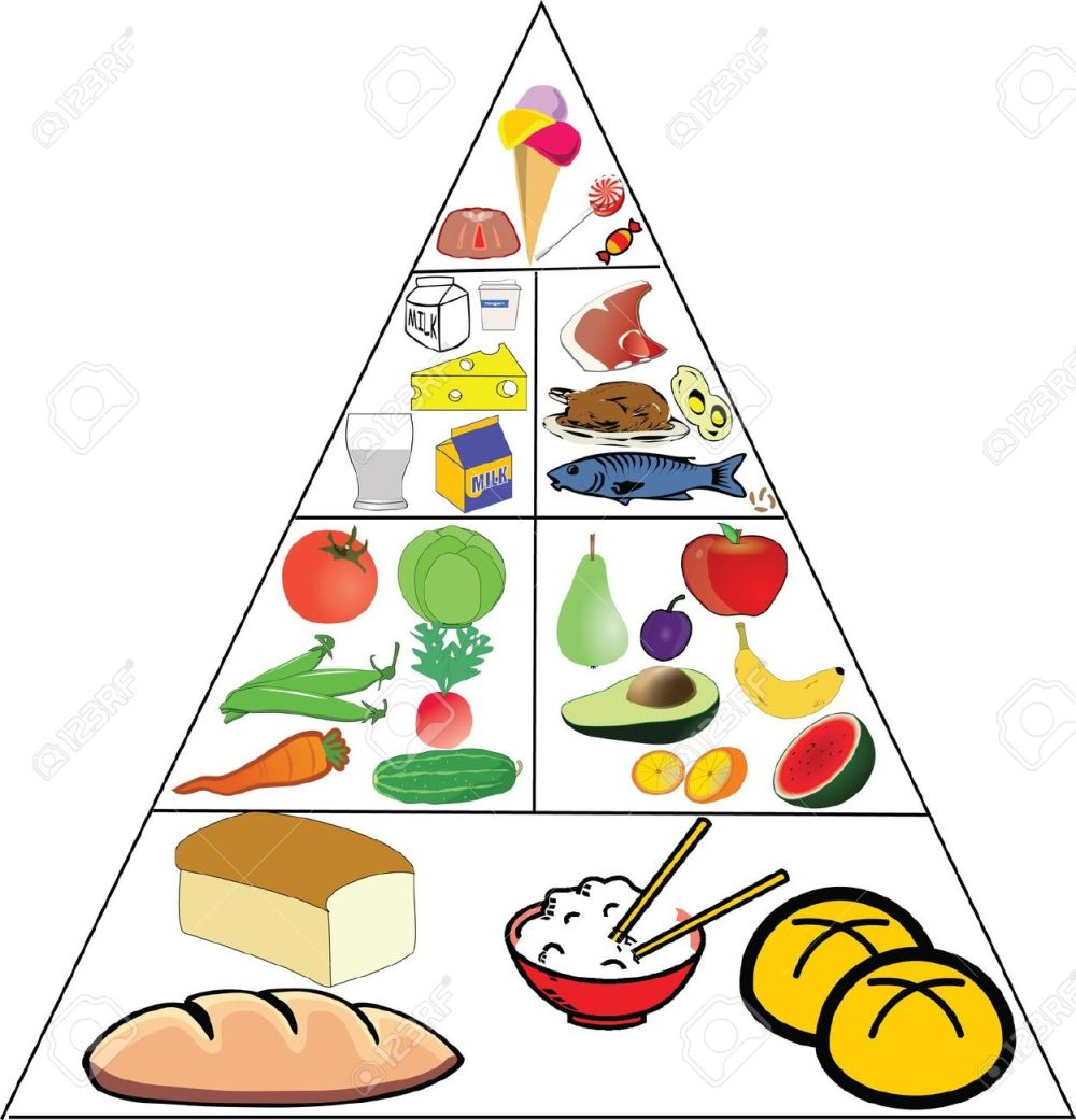 medium resolution of images nutrition pyramid clipart