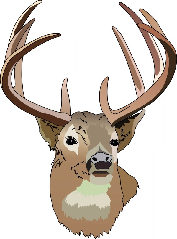 Whitetail Deer Hunting Clip Art Free