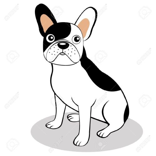 small resolution of french bulldog clipart free