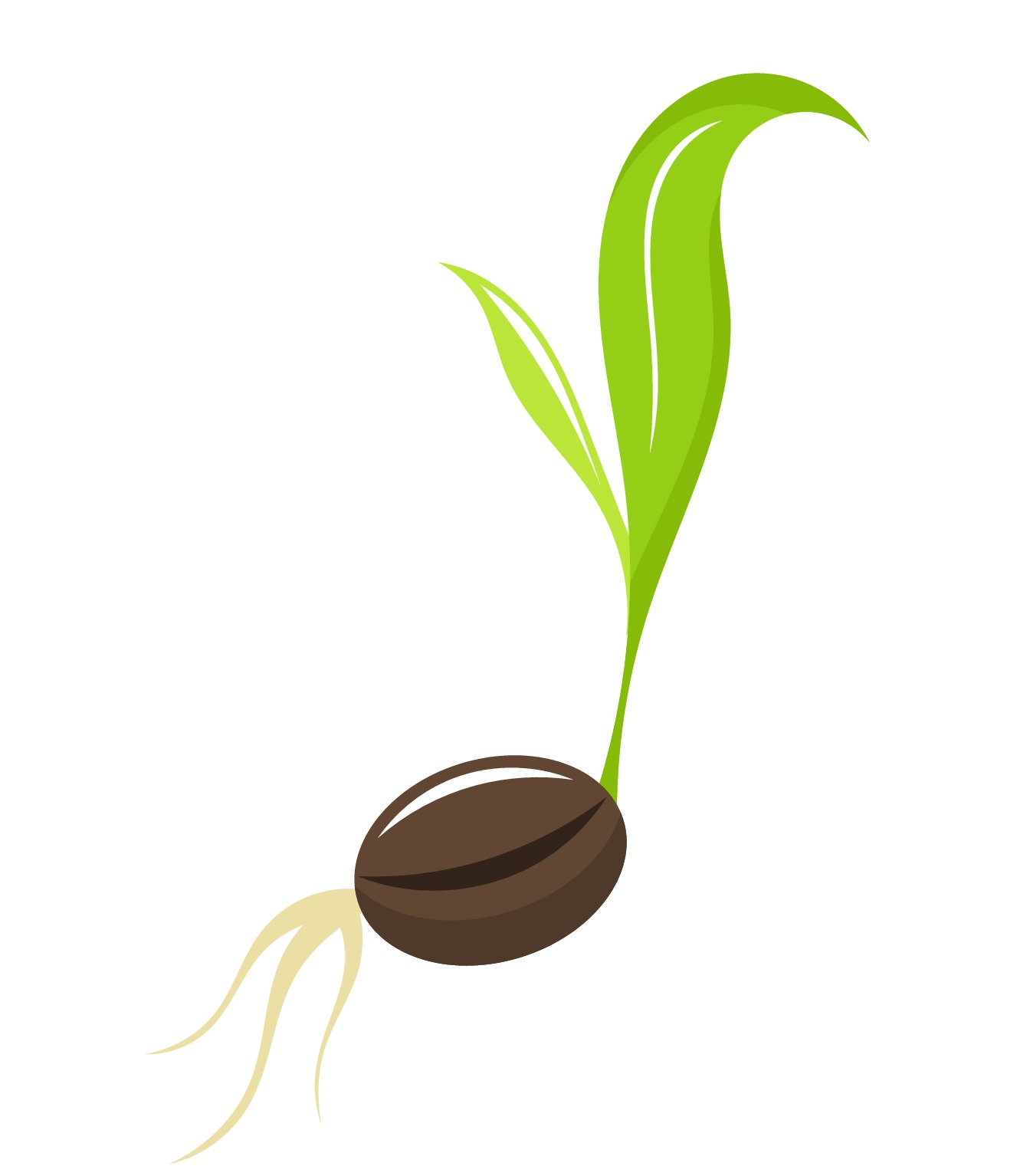 Water A Seed Clipart