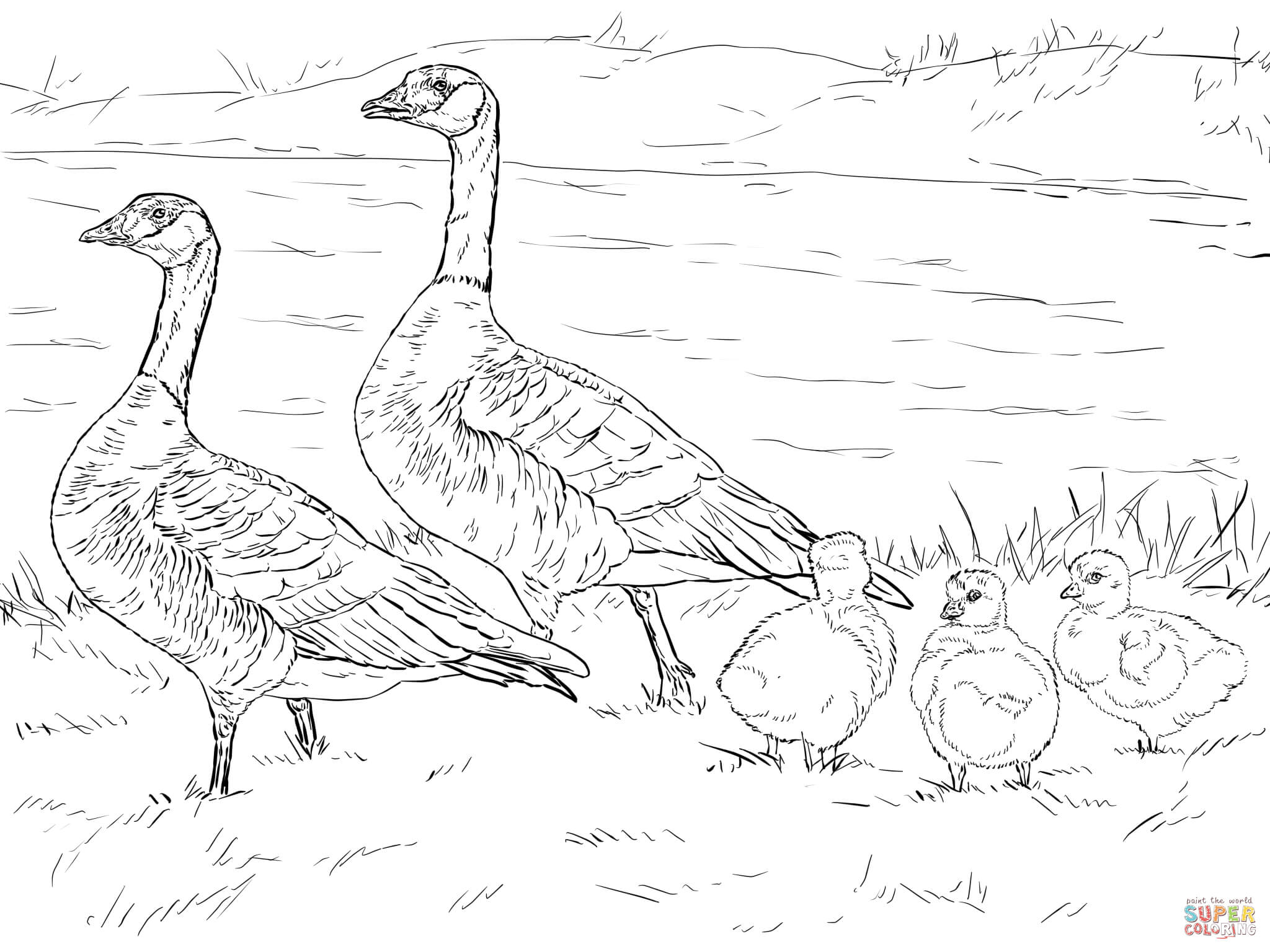 Goose Family Clipart