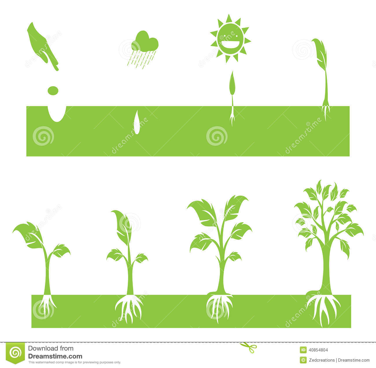 Growing Stock Clipart