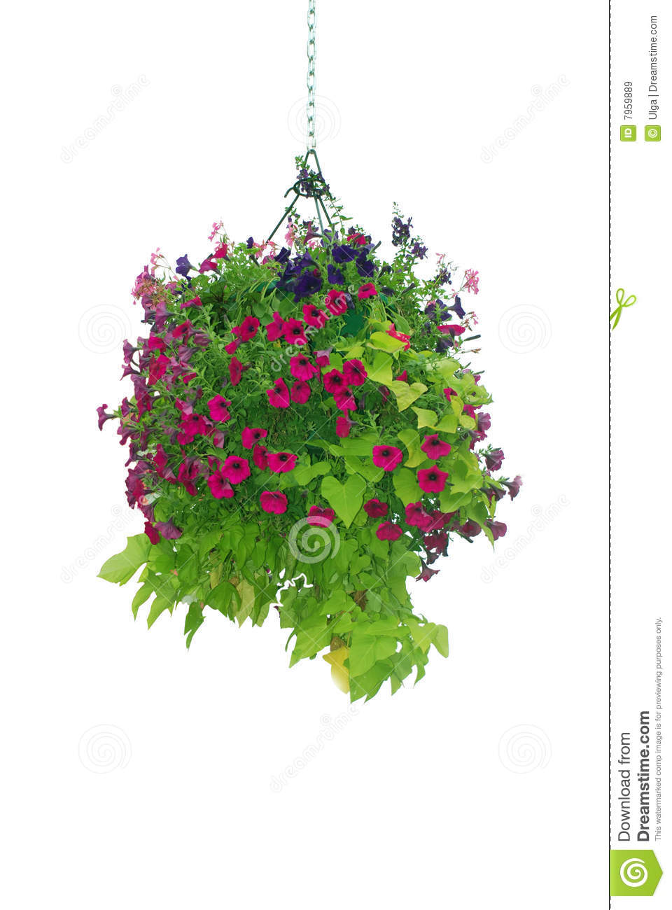 Hanging basket clipart  Clipground