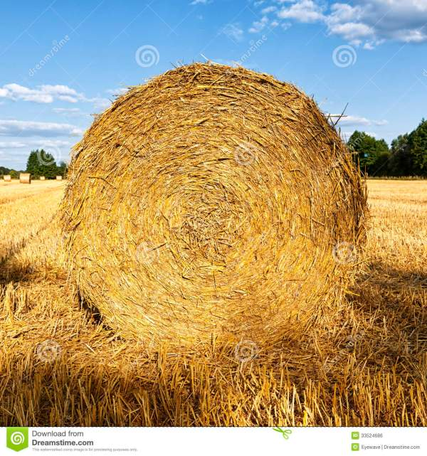 hay rolls clipart - clipground