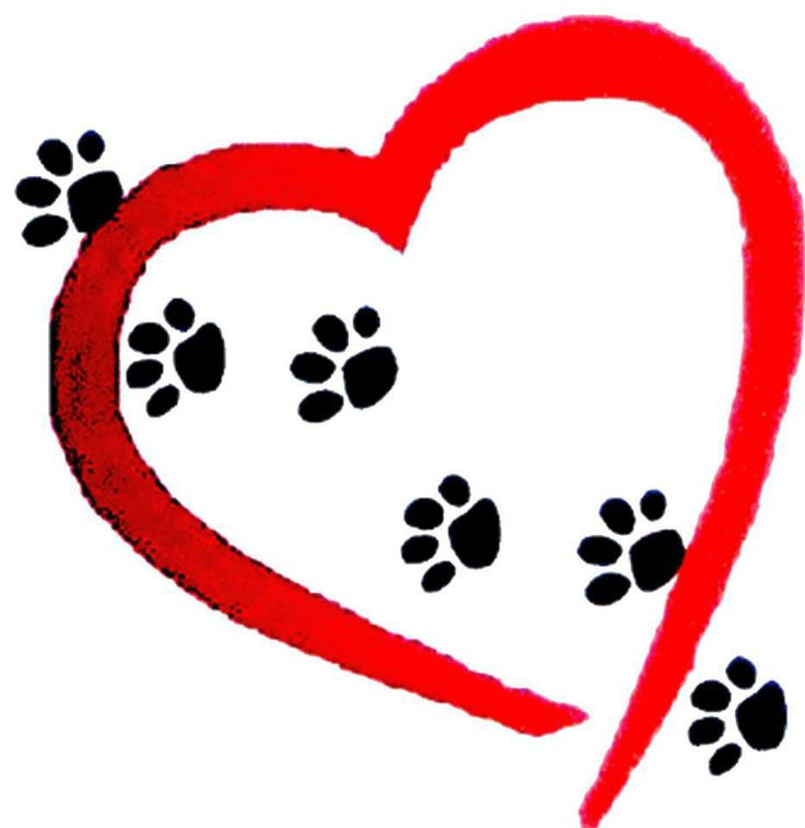 Download heart paw print clipart 20 free Cliparts | Download images ...