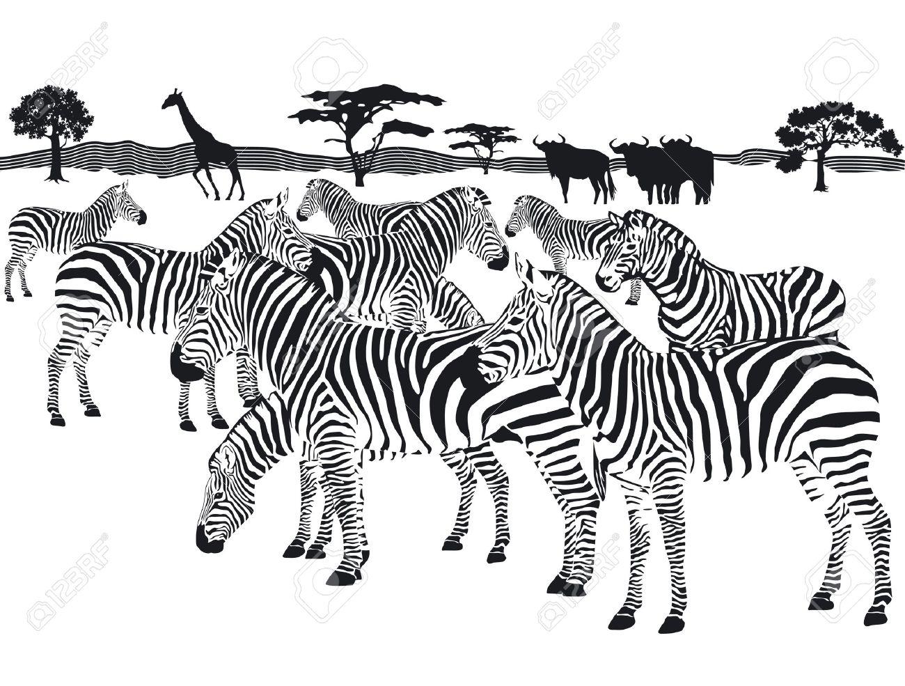 Herd Of Zebras Clipart
