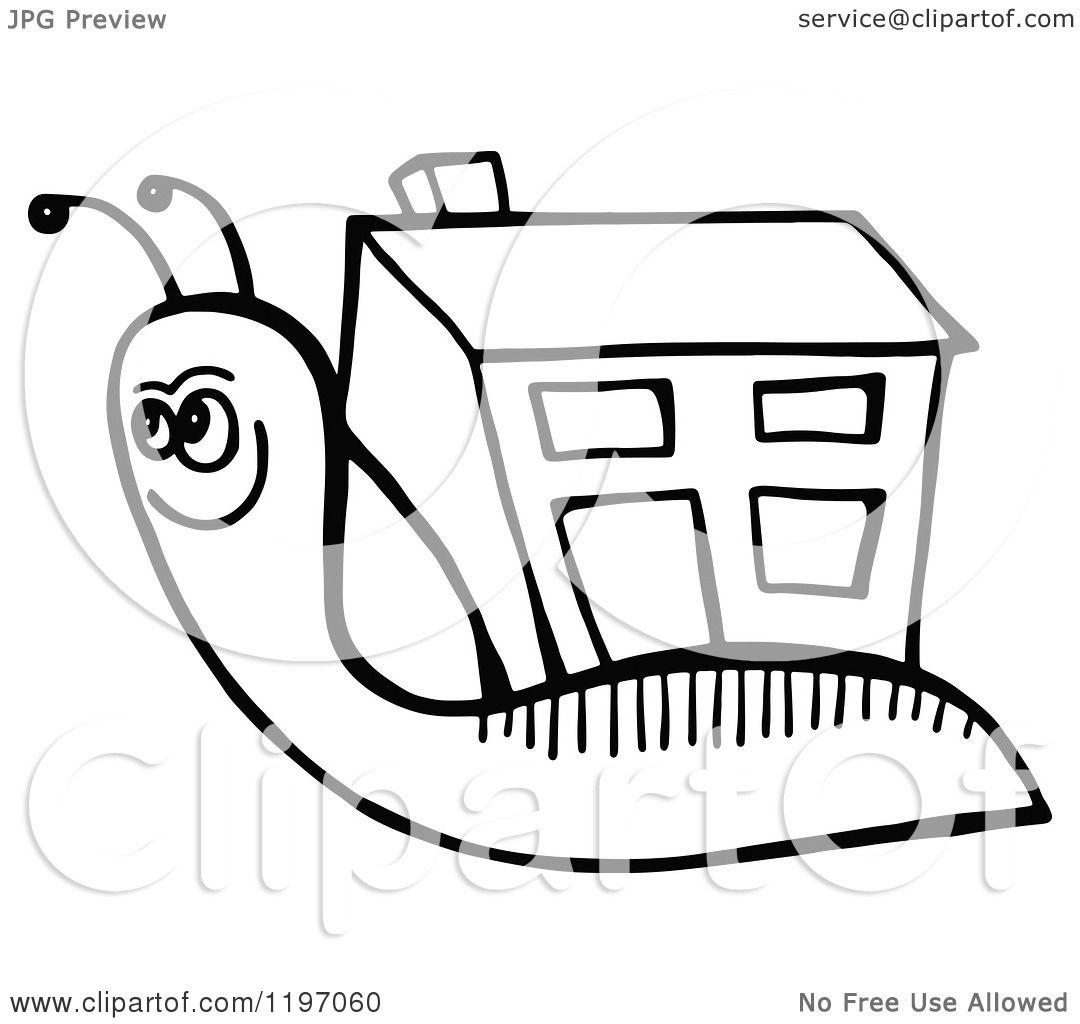 House Snail Clipart