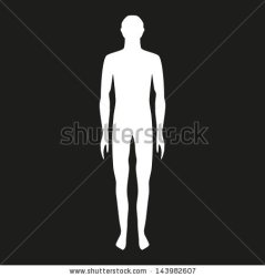 outline human body male vector shapes background structure clipart biology illustration shutterstock clipground similar