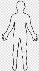 outline human clipart female person shape clipground