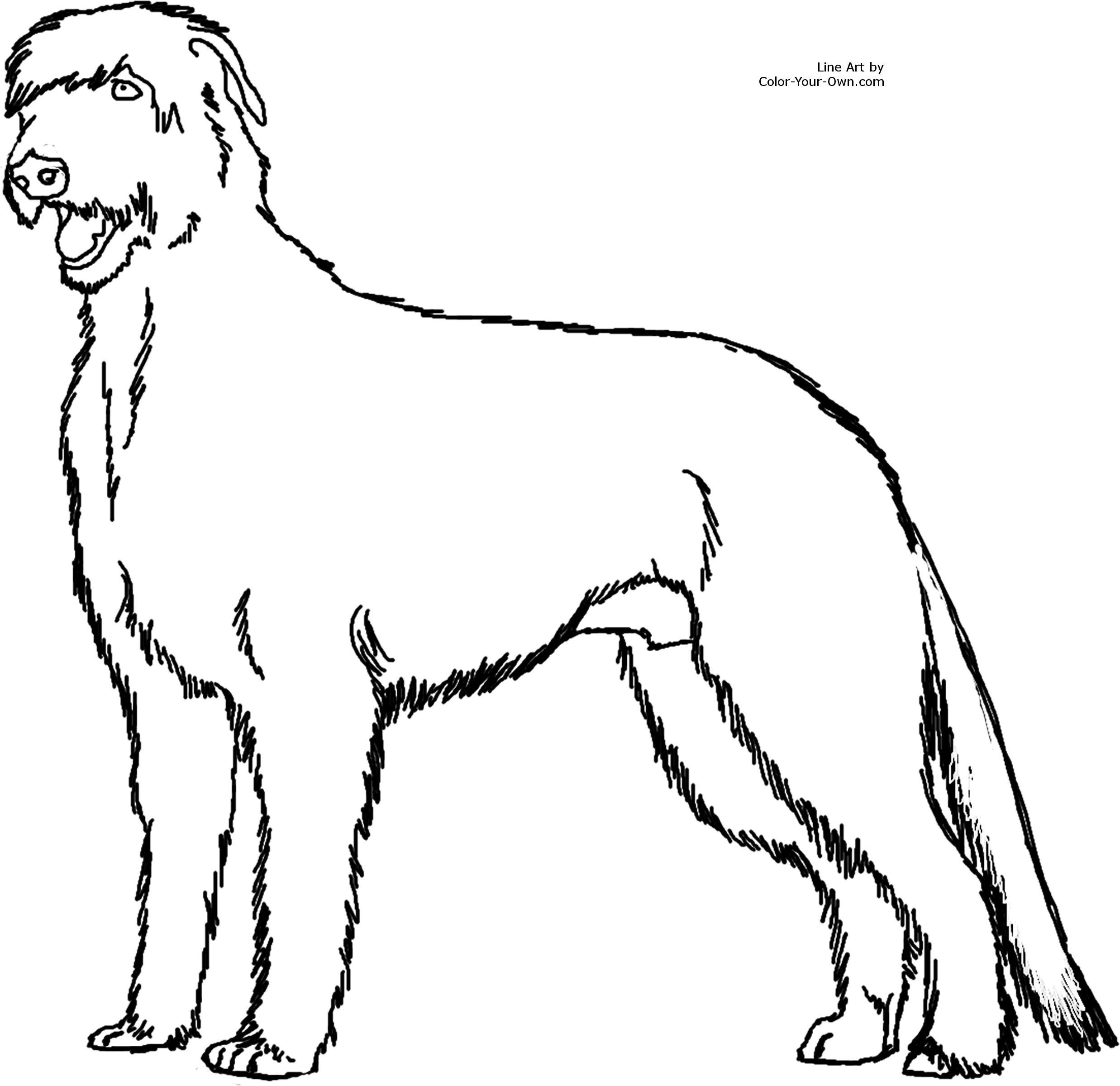 Irish Wolfhound Clipart