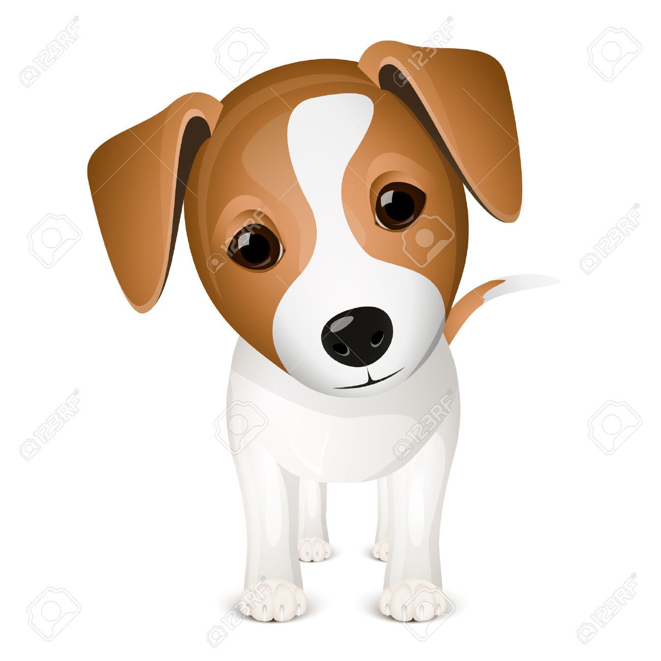 Jack russel clipart  Clipground