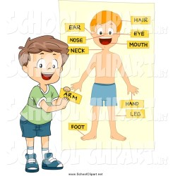 labeling clipart body parts clip boy chart boys 3d clipground cartoon mine