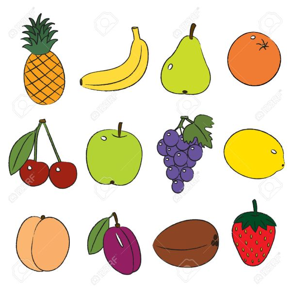 local fruits clipart - clipground