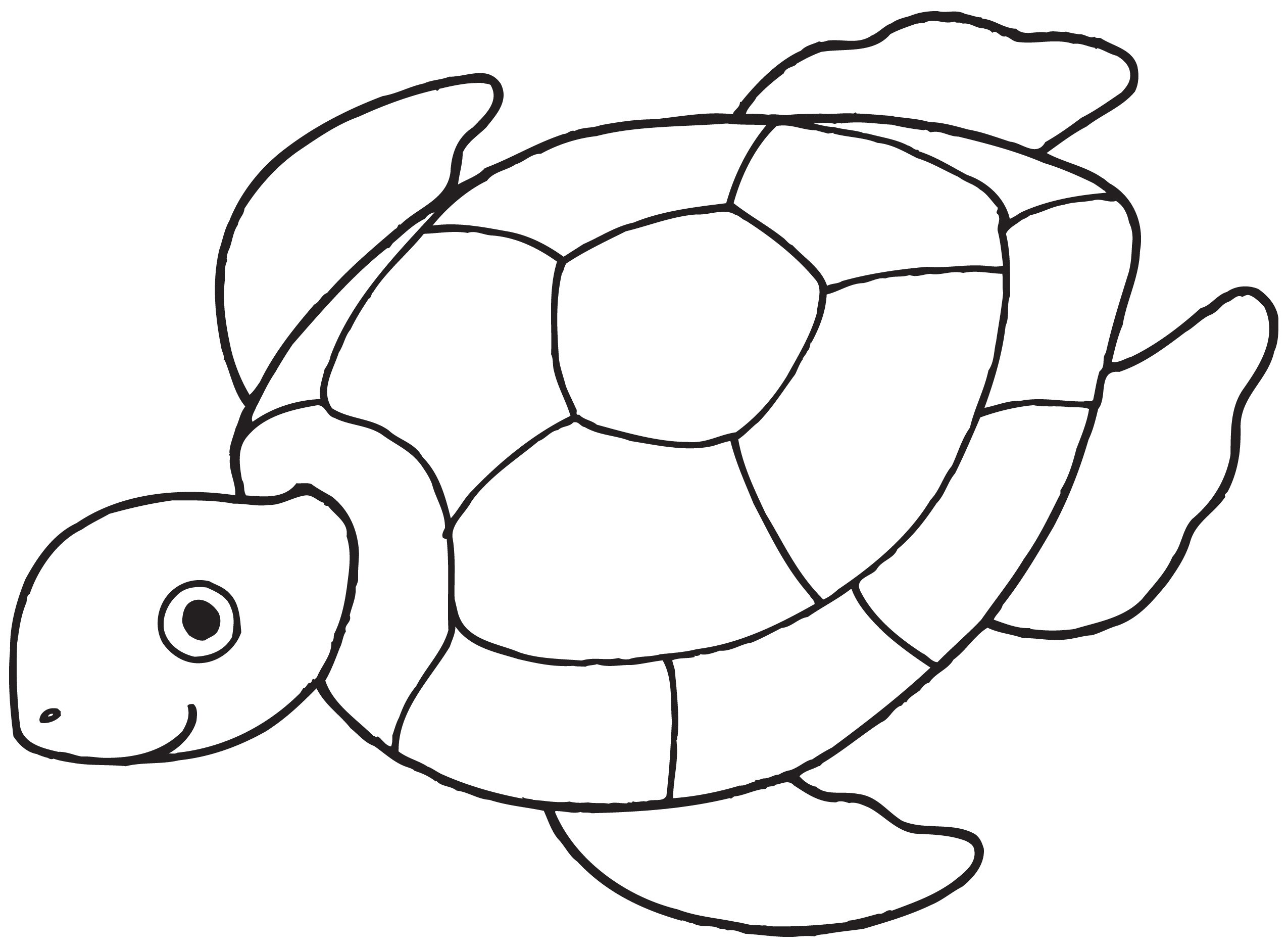 Turtle Outline Clipart Black And White