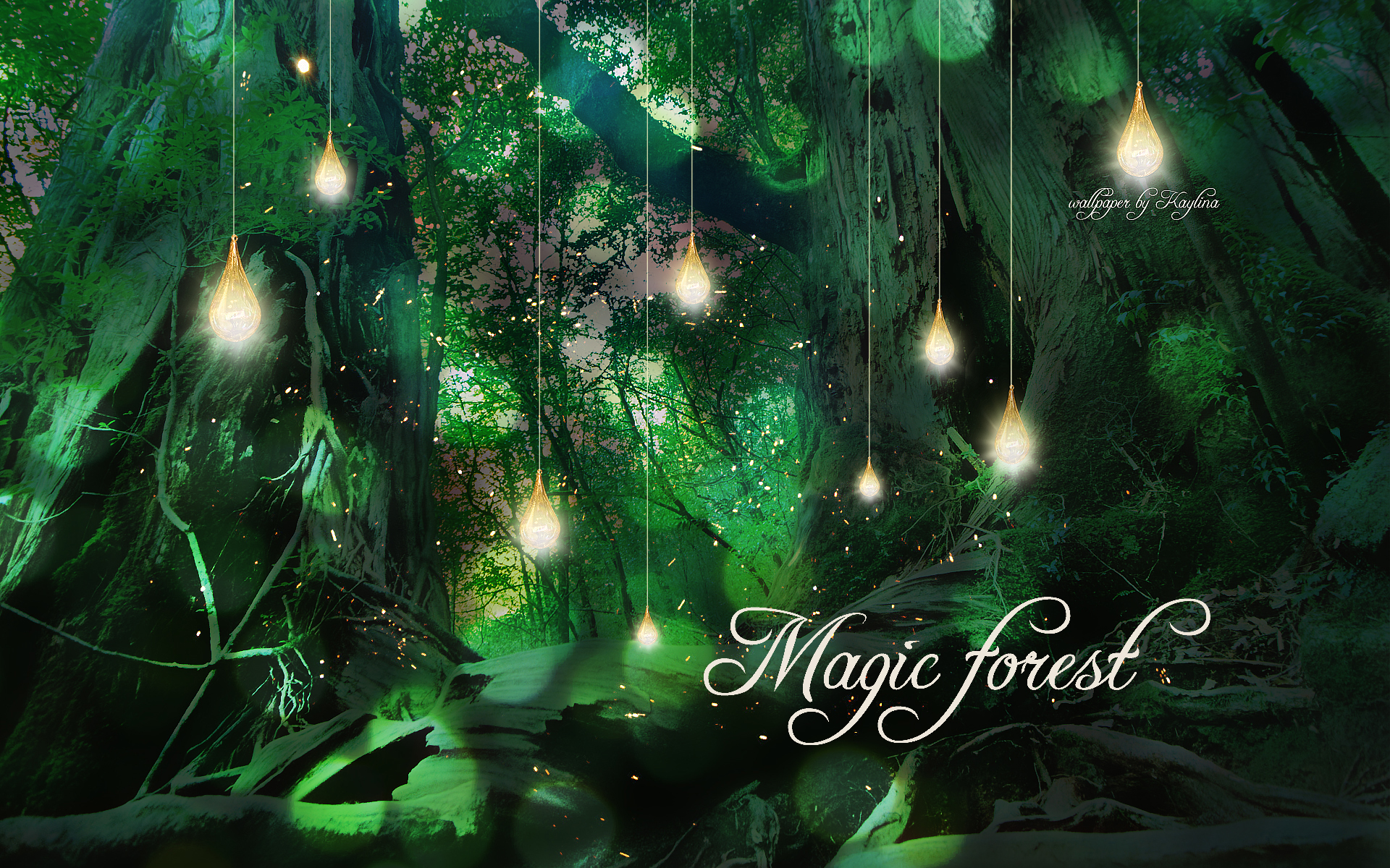 Lanterns Wallpaper Hd Magic Forest Clipart 20 Free Cliparts Download Images On