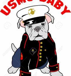 showing post media for marine corps mascot cartoon  [ 1013 x 1300 Pixel ]