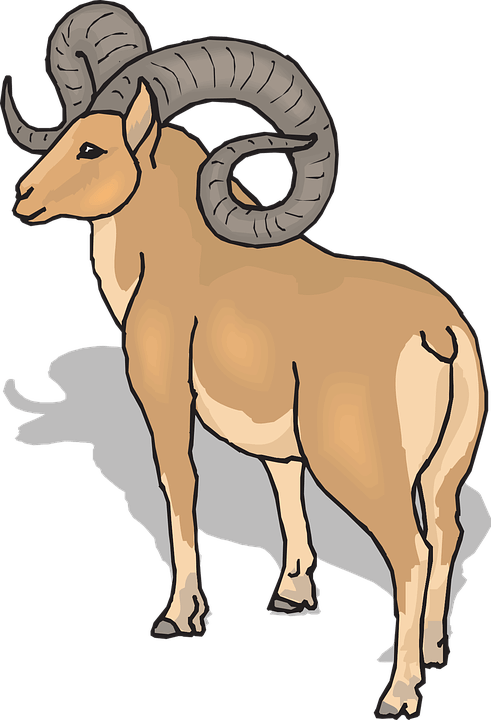 Bighorn Sheep Head Clipart 20 Free Cliparts Download Images On Clipground 2020