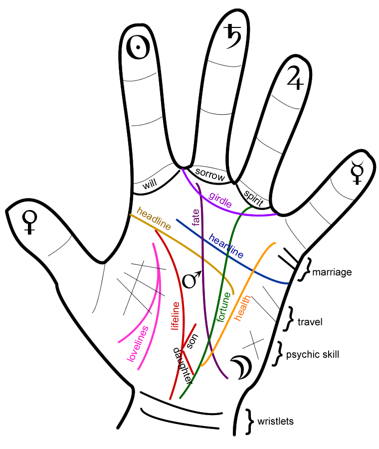 palmistry diagram marriage line brain tumor palm reading clipart clipground
