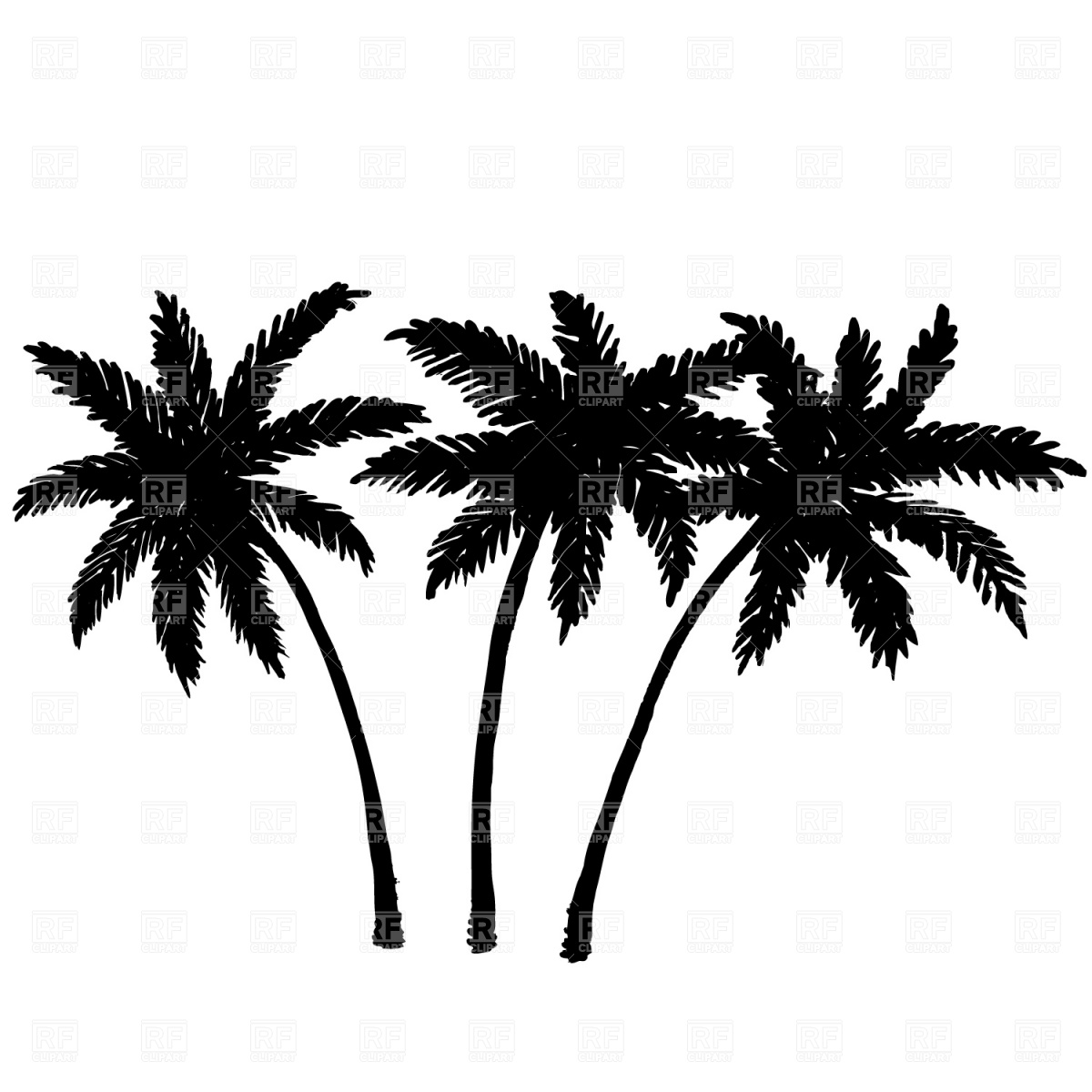 Palm Tree Root Clipart 20 Free Cliparts