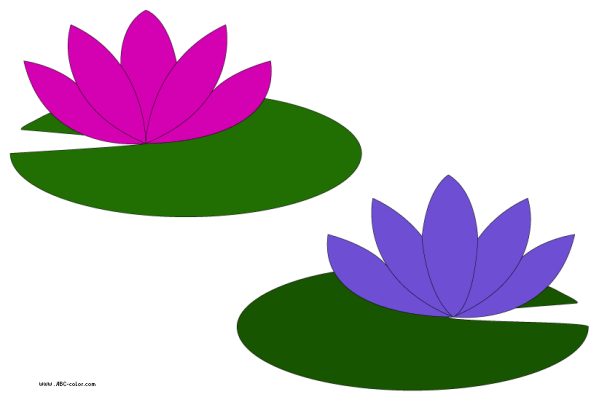 pink water lily clipart - clipground